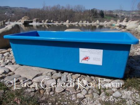 Vasca rettangolare in vetroresina rinforzata 100 x 43 x 30 for Vasche per allevamento ittico