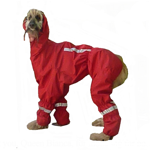 The Ultimate Norway Rain/snow Suit.