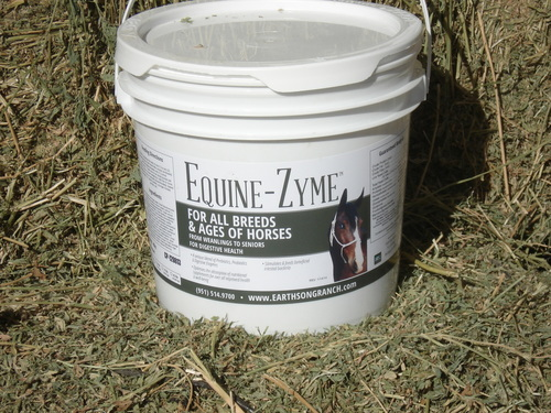 Equine-Zyme for the Digestive Health of Your Horse!