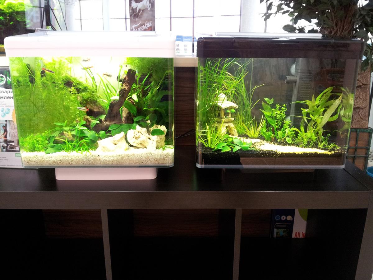 Нано аквариум juwel vio 40 led 30л с